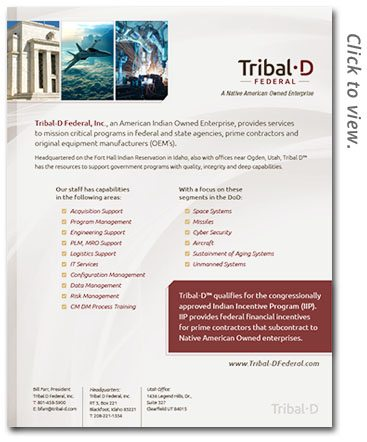 Native American tribal government